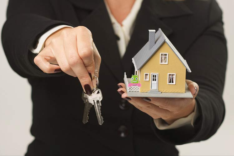 سرمایه گذاری و خرید زمین،ملک،خانه و آپارتمان
